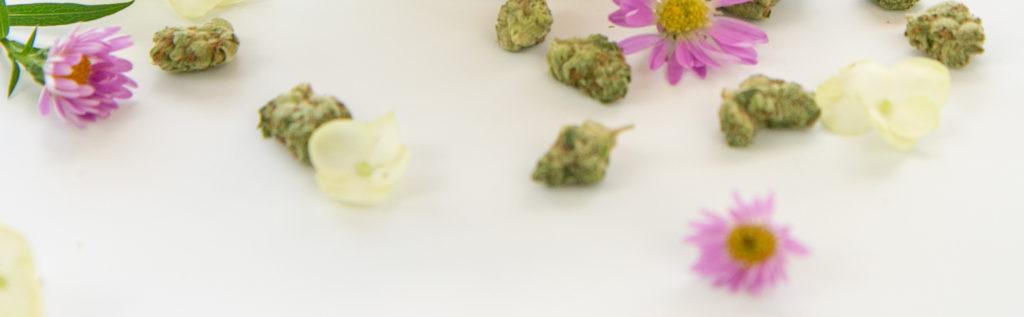 Berkshire Floral