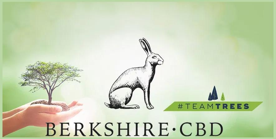 Berkshire CBD Team Trees