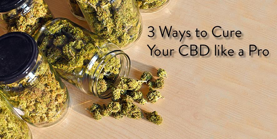 How to Cure CBD Hemp