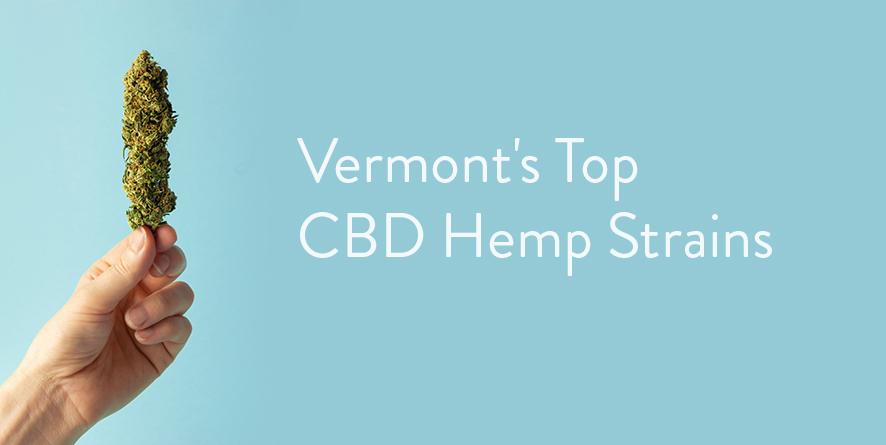Vermont's Top CBD Hemp Strains