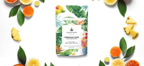 Cannaflower™ Hawaiian Haze