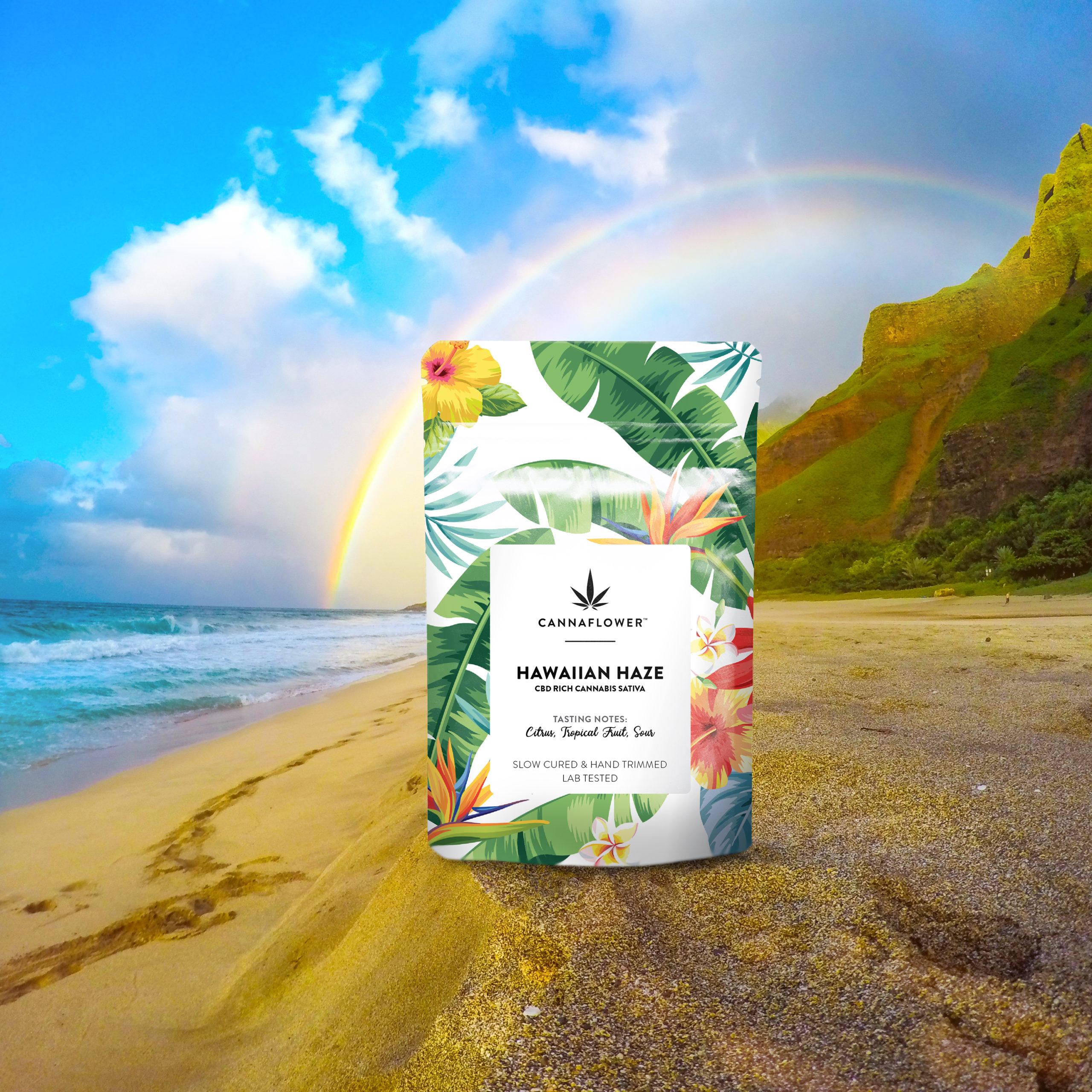 Cannaflower Hawaiian Haze Lifestyle
