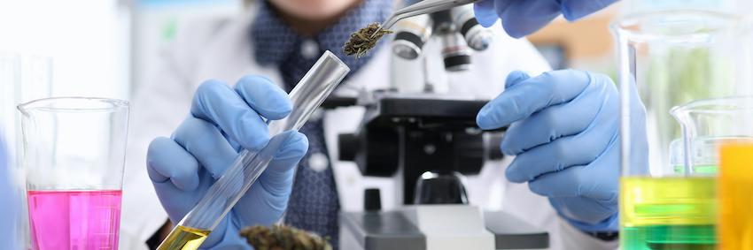 CBD hemp flower lab reports