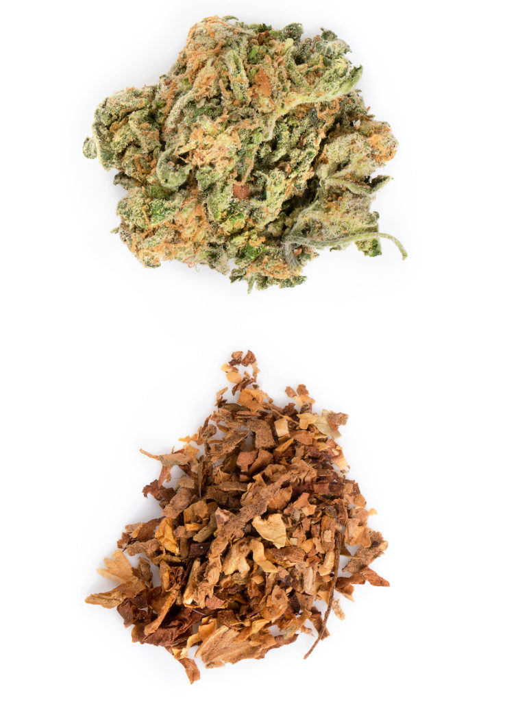 Cannabis is not habit forming