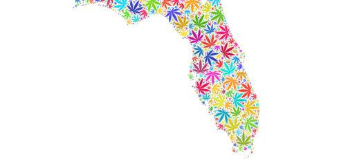 CBD In The Sunshine State – Is Hemp Flower Legal In Florida?