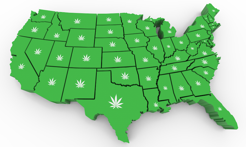 Legalization Process by Individual States