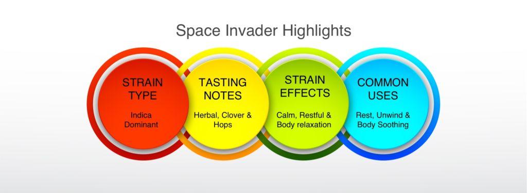 Space Invader Highlights