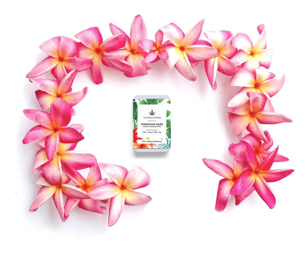 Cannaflower Hawaiian Haze 5 Pack Effects