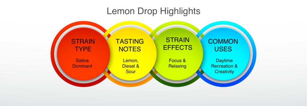 Lemon Drop highlights