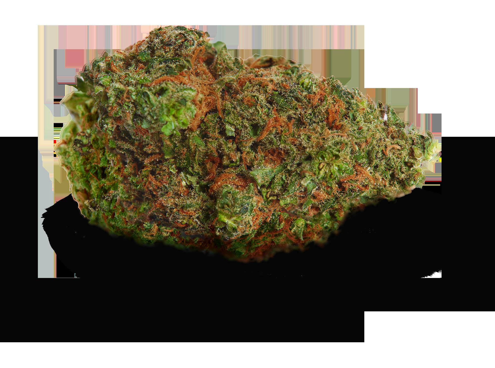 Cannaflower Box Calm Bud