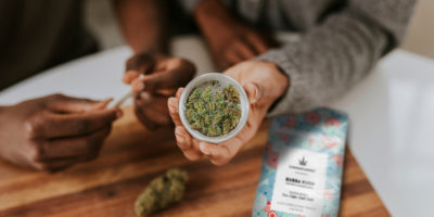 What's All The Clamor Over CBD Flower? — A Beginner's Guide To The Best High CBD Strains